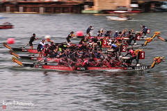FXT22538 (kevinegng) Tags: singapore marinabay sports boats dragonboatrace competition reflection watersports panning