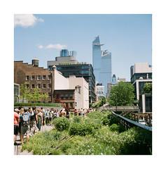FILM - Walking the High Line (fishyfish_arcade) Tags: 6x6 analogphotography filmphotography filmisnotdead foldingcamera istillshootfilm kodak newyork portra400 zeissmessikonta52416 analogcamera film mediumformat thehighline
