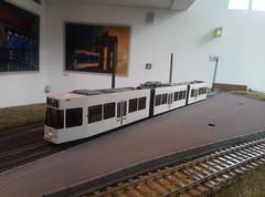 IMG_20190607_170420_6 (K. Reinhard) Tags: modultram südbaden modulbau nürnberg halling rietze hödl tram bus 3d druck mvg münchn münchen kbgg 2019 187 h0 modelltrram h0m fremo gt4 combino variobahn freiburg basel hannover eisenbahn