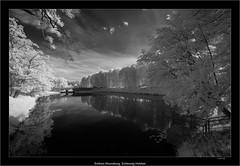 Schloss Ahrensburg, Schleswig Holstein (Dierk Topp) Tags: 850nm a7r auhrensburg bw bäume ilce7r ir sony1635mmvariotessartfef4zaoss sonya7rir infrared monochrom sw schloss sony trees