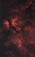The Sadr Region (AstroBackyard) Tags: astrophotograhphy astronomy space telescope sadr star cygnus william optics fornax deep sky universe cosmos night canon 60da nebula