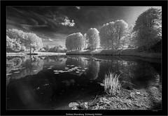 Schloss Ahrensburg, Schleswig Holstein (Dierk Topp) Tags: 850nm a7r bw bäume ilce7r ir sony1635mmvariotessartfef4zaoss sonya7rir infrared monochrom sw schloss sony trees