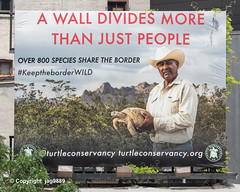 """A Wall Divides More Than Just People"" Turtle Conservancy Billboard, Chelsea, New York City (jag9889) Tags: 2019 20190607 animal billboard border chellonii chelsea conservancy manhattan mexico ny nyc newyork newyorkcity outdoor people reptile shell shield sign testudines text turtle usa unitedstates unitedstatesofamerica wall wild jag9889"