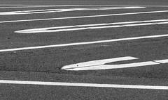 Magdeburger Impressionen (Helmut44) Tags: deutschland germany sw magdeburg parkplatz linien sachsenanhalt strasse