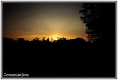 GRACIAS DIOS POR VER UN NUEVO AMANECER. THANK GOD FOR SEEING A NEW DAWN. (ALBERTO CERVANTES PHOTOGRAPHY) Tags: dawn amanecer thand aurora streetphotography sol sun tree nubes clouds sky indoor outdoor blur photography colornight nightcolor colorlight luz light color colores colors brillo brightcolors photoart art creative photoborder solnaciente risingsun rising rayosdelsol twilight horizonte horizon twilightrays rays sunrise silueta silhouette retrato portrait