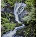 Cascade du Triberg en Forêt noire (Triberger Wasserfälle)