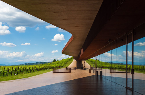 Wine meets Architecture