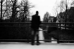 Man on a bridge (Ricoh GR1) (stefankamert) Tags: man bridge film analog grain creek ricoh gr1 kodak trix noir noiretblanc blackandwhite blackwhite bw blur blurry balingen stefankamert lines highcontrast trees