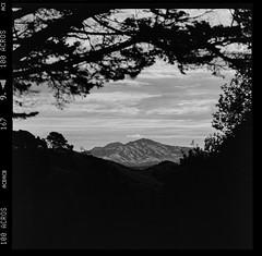 Mt. Diablo from Skyline (Graham Gibson) Tags: hasselblad bw white black 120 6x6 film fuji system v series fujifilm medium format 100 500 acros 503cx