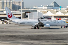 Japan Airlines - Boeing 737-846(WL) / JA312J @ Manila (Miguel Cenon) Tags: jal jal737 jal738 japan japanairlines rpll boeing boeing737 boeing738 b737 b738 airplanespotting airplane apegroup appgroup airport aircraft aviation planespotting ppsg philippines plane manila nikon naia narrowbody d3300 wings wing window wheel winglet twinengine ja312j
