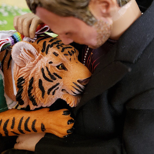 who's a good tiger?