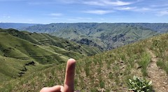 Frenchy Point Ride (Doug Goodenough) Tags: bicycle bike cycle pedals spokes trek farly waha craig mountains fat spring june 2019 19 carol sean vistas views snake river salmon hells canyon wild flowers dirt canyons drg531 drg53119 drg53119p drg53119pfrenchy
