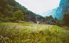 Dichterstunde (_andrea-) Tags: stefanzweig sonya7m2 foroglio val bavona nature meadow moody sonyphotography ticino tessin
