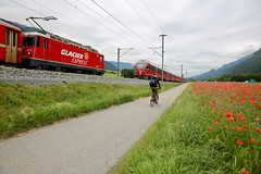 Glacier Express (Marcel Cavelti) Tags: mk37356 glacierexpress train switzerland rhb red slow express road poppy bicyclists ebike grisons swiss alps mountain