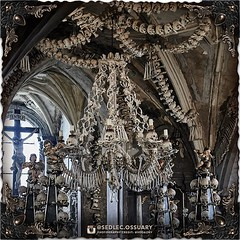 """""""Man cannot possess anything as long as he fears death. But to him who does not fear it, everything belongs."""" -Leo Tolstoy⠀ .⠀ 💀 Sign up on our mailing list for exciting special announcements! 💀⠀ ☩ sedlecossuary.mechanicalwhispers.com ☩⠀ ☩ Or (Sedlec Ossuary Project) Tags: sedlecossuaryproject sedlec ossuary project sedlecossuary kostnice kutnahora kutna hora prague czechrepublic czech republic czechia churchofbones church bones skeleton skulls humanbones human mementomori memento mori creepy travel macabre death dark historical architecture historicpreservation historic preservation landmark explore unusual mechanicalwhispers mechanical whispers instagram ifttt"""