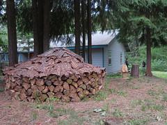 norwegian wood stack (carolyn_in_oregon) Tags: troutlake washington damon danielle