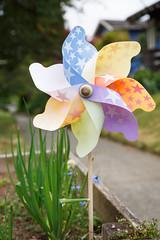 154/365 pinwheel