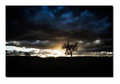 Ciel E6 Dg1 Bd Rd1 _MG_2720 (thierrybarre) Tags: ciel nuages orage sunset sunrise tempête arbres landscape
