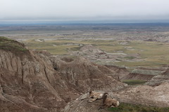 Looking across South Dakota at Badlands National Park (Hazboy) Tags: hazboy hazboy1 south dakota badlands national park parc west western usa us america april 2019