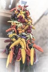 caution hot! (janetfrerichs) Tags: urlaub mallorca spanien balearischeinseln mai2019 holiday hot vegetables shop 35mm spain nikon colorful chilli fullframe d800 soller peperoni vollformat nikond800 sigmaart
