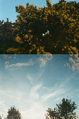 30880019 (thophi24) Tags: 35mm analog analogue trailer park holiday olympus olympusom10 fuji lightleak