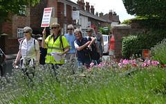 Bright spot in East Street (Chrispics Photography) Tags: farnham walking festival lions heartstart
