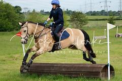 _MG_5692 (VickiClarkePhotography) Tags: canoneos70d horses nathudson mini mattingley hook xc cross country jumping eventing tamron 70200mm palomino buckskin dun