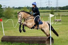 _MG_5691 (VickiClarkePhotography) Tags: canoneos70d horses nathudson mini mattingley hook xc cross country jumping eventing tamron 70200mm palomino buckskin dun