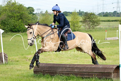 _MG_5690 (VickiClarkePhotography) Tags: canoneos70d horses nathudson mini mattingley hook xc cross country jumping eventing tamron 70200mm palomino buckskin dun