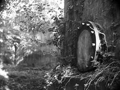 1145 (a.pierre4840) Tags: olympus omd em10 micro43 cmount schneider kreuznach xenon 25mm f095 dof depthoffield selectivefocus bokeh bw blackandwhite noiretblanc vignetting abandoned derelict ruined decay