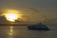 Galápagos Adventures (Simon Caunt) Tags: galapagosarchipelago galapagosmarinereserve galapagos gadventures galápagos nikond800 nikoncameras nikon nikondslr d800 240700mmf28nikkor afsnikkor2470mmf28 unesco unescoworldheritage southamerica equador nature naturalworld ©simon caunt
