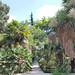 Königlicher Botanischer Garten
