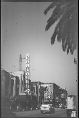 KonicaAutoreflex_Kodak2468_D76Stock_6_30500 (Michael Bartosek) Tags: kodak2468 2468 orthochromatic film 35mmfilm 35mm sprocketless kodak konicaautoreflext3 knoica 50mmlens hollywood california d76stock kodakd76