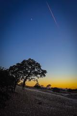Paso 2 Sensorio-8463 (danielbcozad) Tags: bruce diana lights munro pasorobles birthday sensorio sol