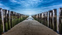 Der Blick in die Weite (dietertitscher) Tags: westkapelle strand nordsee