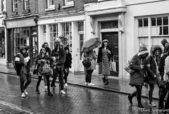 Rochester Sweeps (daveseargeant) Tags: street high rochester medway monochrome blackwhite nikon df 50mm 18g umbrella rain
