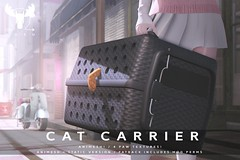 Cat Carrier @ Equal10! (MistahMoose) Tags: cat carrier secondlife cute animesh animated