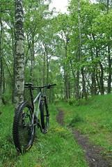 Ness Castle singletrack (What I saw...) Tags: inverness highlands scotland singletrack ness castle stanton sherpa 835 mountain bike