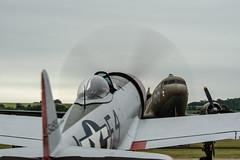 Fighter cover.. (mickb6265) Tags: duxford cambridge cambridgeshire iwm imperialwarmuseum dday75thanniversarydeparture normandy republicp47thunderbolt nellie sywell douglasdc3dakota aceshigh 549192 2100884