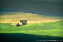 Palouse Layers (David Swindler (ActionPhotoTours.com)) Tags: palouse washington barn farm green light wheat pacificnorthwest farmland sunset