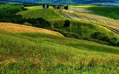 Cappella di Vitaleta (giannipiras555) Tags: toscana chiesa arte natura paesaggio panorama landscape fiori colline colori nikon