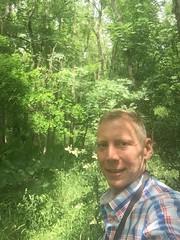 20190610_Stronegg_Ai_007 (Tauralbus) Tags: stronegg niederösterreich loweraustria wald forest
