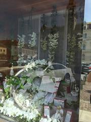 20190610_Laa_002 (Tauralbus) Tags: apotheke pharmacy apothekezumheiligenjosef laa schaufenster