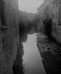 Rio, Mantova (memedesimo) Tags: mantova mantua italy italia acqua water rio