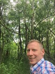 20190610_Stronegg_Ai_027 (Tauralbus) Tags: stronegg niederösterreich loweraustria wald forest