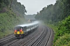 442410 (stavioni) Tags: swr south western railway class442 plastic pig wessex electric multiple unit emu rail train