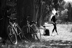 Picnic en Carcassonne (Marcosbamala) Tags: carcassonne bicicleta bici bicycle frança france francia picnic photo photograph photography picture pic foto fotografia canon 1855mm eos1000d