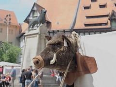 Löwe und Wildschwein (1elf12) Tags: wildschwein tier animal kopf head boar eber braunschweig germany deutschland pfingsten 2019 mittelaltermarkt medieval market