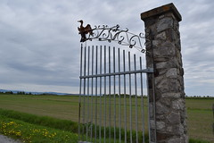 le domaine a bella a saint andré de kamouraska (4) (Boriton42) Tags: cormoran