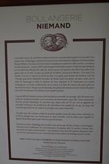 DSC_0107 (Boriton42) Tags: cormoran